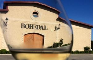 Experiencia Bohedal + vino + degustación + botella...