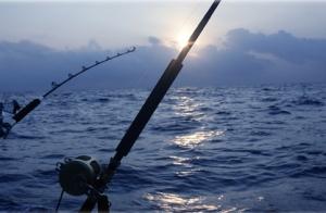 Curso de pesca + salida en barco